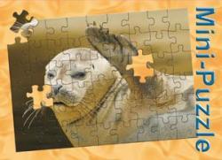 Minipuzzle Seehund