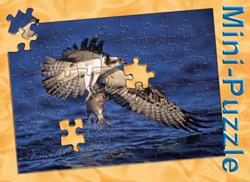 Minipuzzle Fischadler