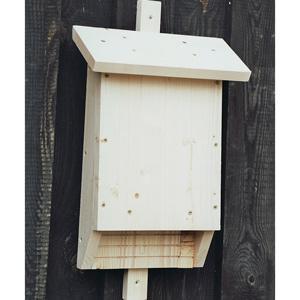 der natur shop naturschutz produkte fledermaus spaltenkasten online kaufen. Black Bedroom Furniture Sets. Home Design Ideas