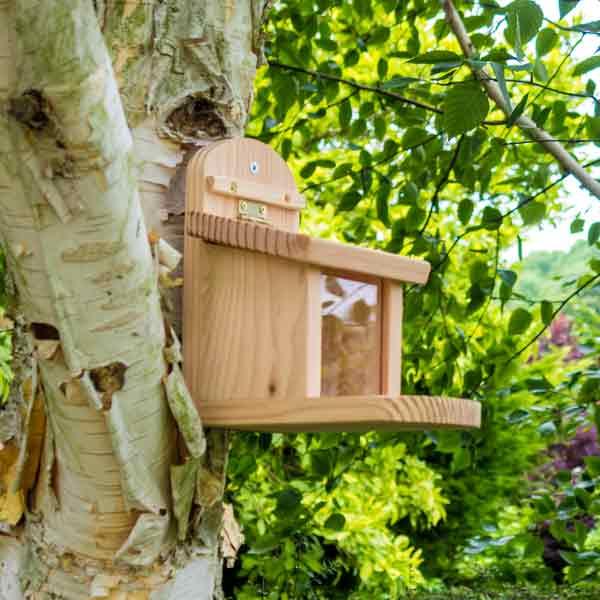 der natur shop naturschutz produkte eichh rnchen futterkasten online kaufen. Black Bedroom Furniture Sets. Home Design Ideas